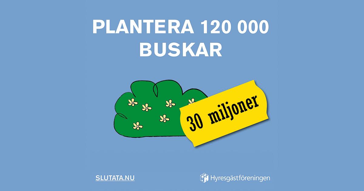 http://slutata.nu/share/120000-buskar/